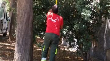 Un treballador realitzant tasques de manteniment a l'Arboç.
