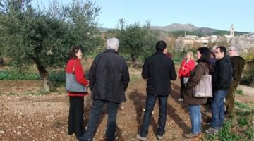 La iniciativa combina la gastronomia amb el coneixement del cultiu de l'oliva i la producció de l'oli.