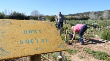 Horts familiars i socials per a urbanites que no renuncien a l'agricultura ecològica